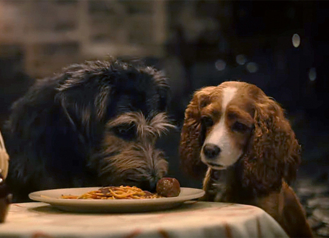 "New Live Action Trailer for ""Lady and the Tramp"" 1"