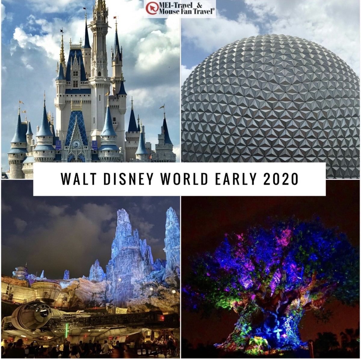 Walt Disney World Early 2020 Offers are Here! 7