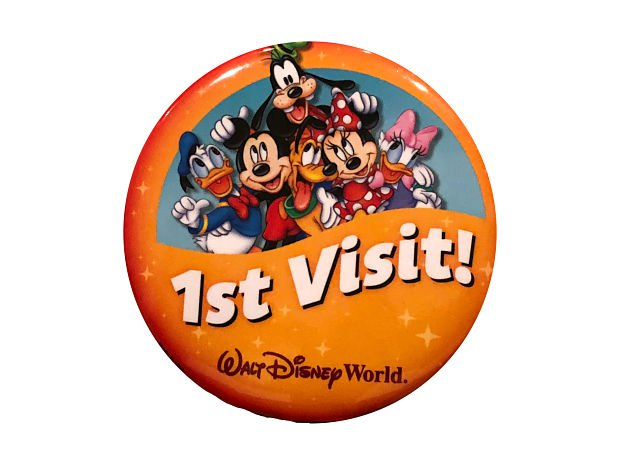 Top 10 Things To Do With Kids On Their First WDW Visit 1