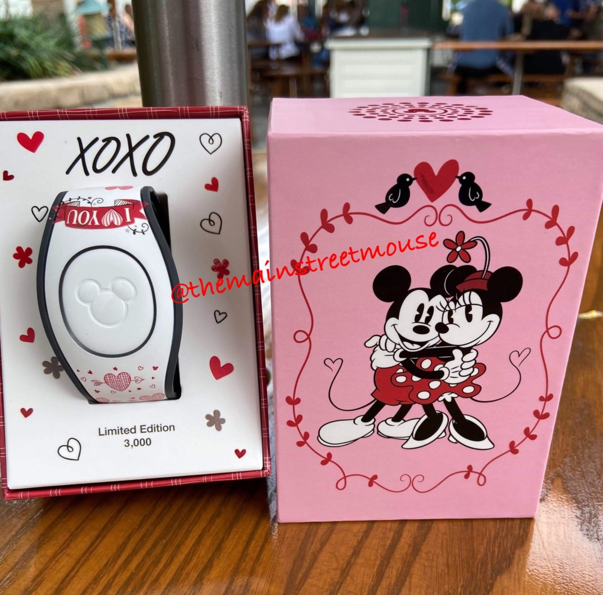 Mickey Loves Minnie Valentine MagicBands! 49