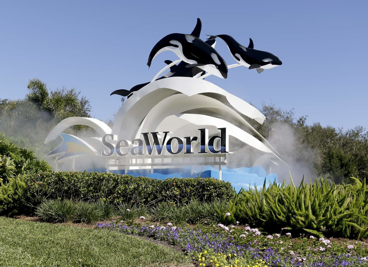 Sea World furloughs more than 90% of its employees over coronavirus pandemic 5