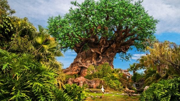 The Rohdes, Less Traveled: Inside the Design and Inspiration of Disney's Animal Kingdom Theme Park 3