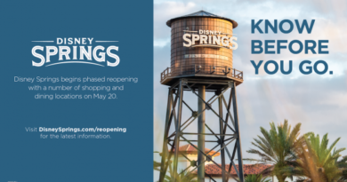 Welcome Back! Here's What You Need to Know About the Phased Reopening of Disney Springs at Walt Disney World Resort 4