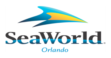SeaWorld, Aquatica, and Discovery Cove Parks in Orlando Set to Reopen June 11