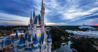 Magic Is Here as Walt Disney World Resort Theme Parks Prepare to Welcome Guests Again 10