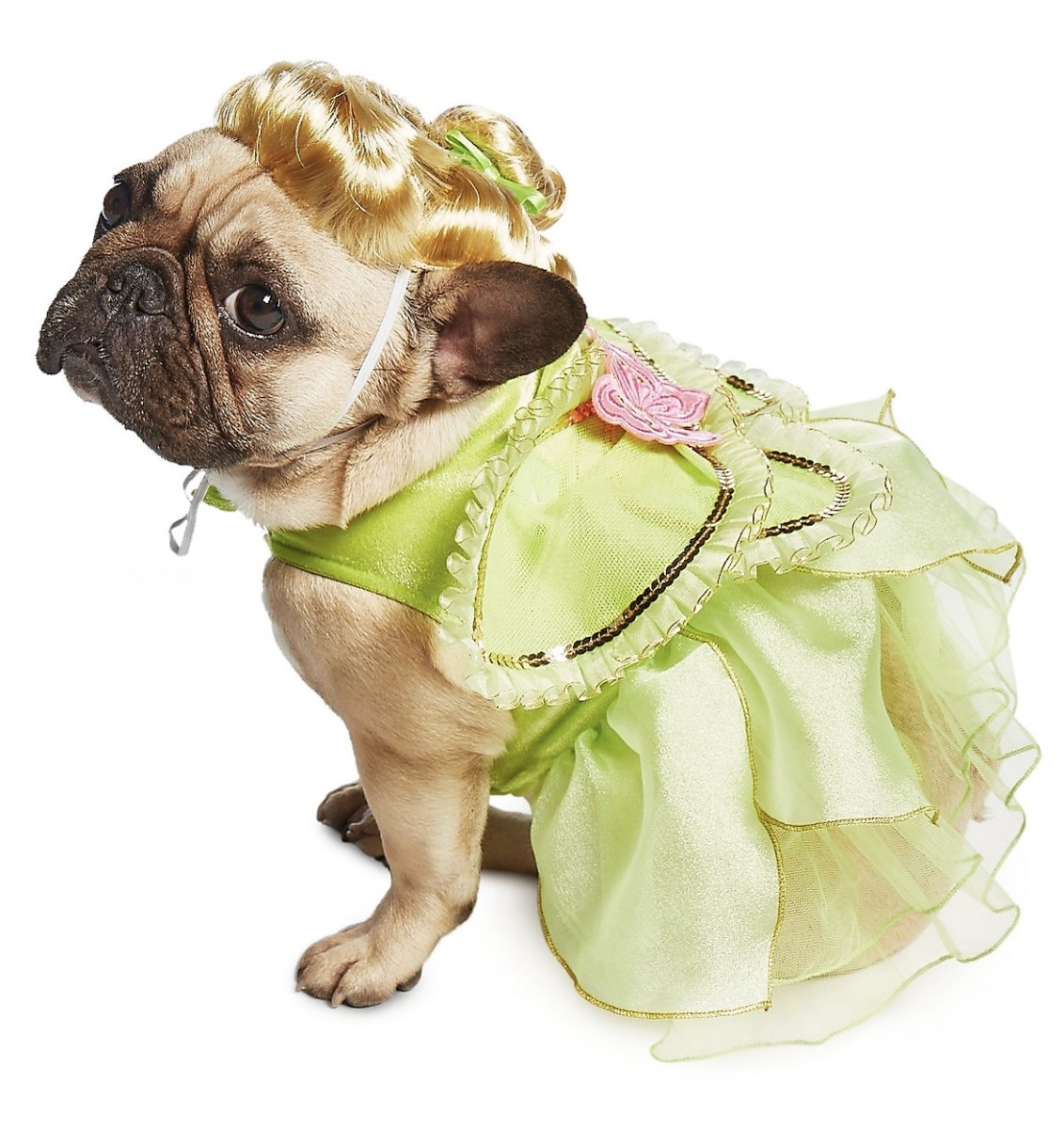 New Disney Halloween Costumes for Pets at shopDisney! 4