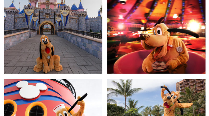 #DisneyMagicMoments: Join Us for an Ulti-mutt Disney Celebration of International Dog Day 3