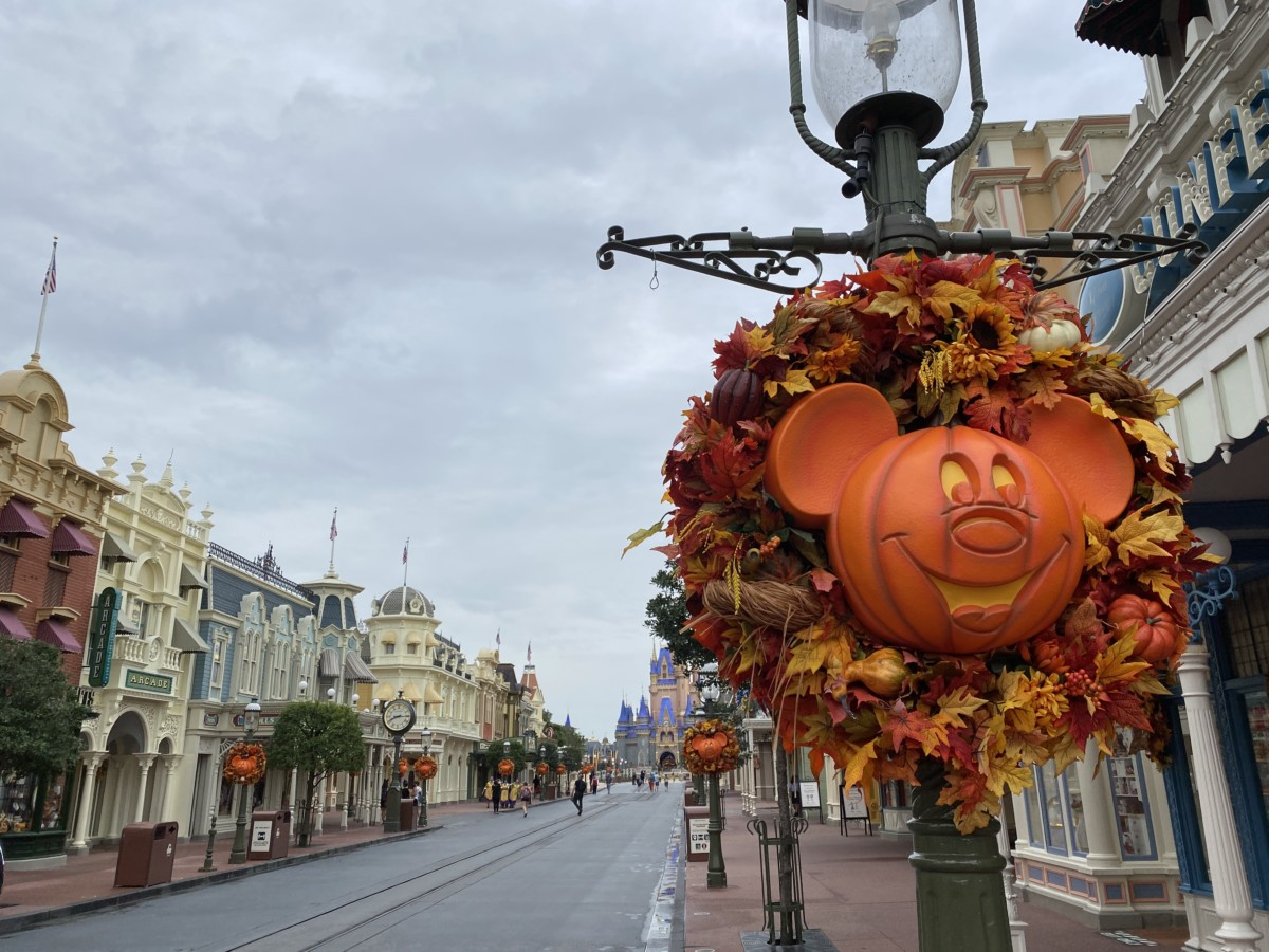 TMSM's Adventures in Florida Living - This is Halloween 3